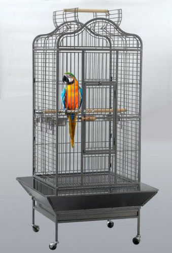 Gabbia voliera per pappagalli h 157 cm uccelli for Voliera fai da te