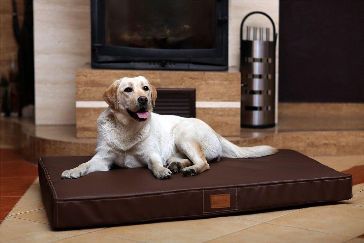 Cuccia letto materasso ortopedico 120cm animalmarketonline - Letto per cani ...