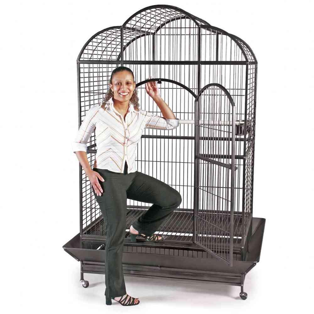 Voliera gabbia recinto Parrot Cage PAPPAGALLI UCCELLI H 183 cm ...