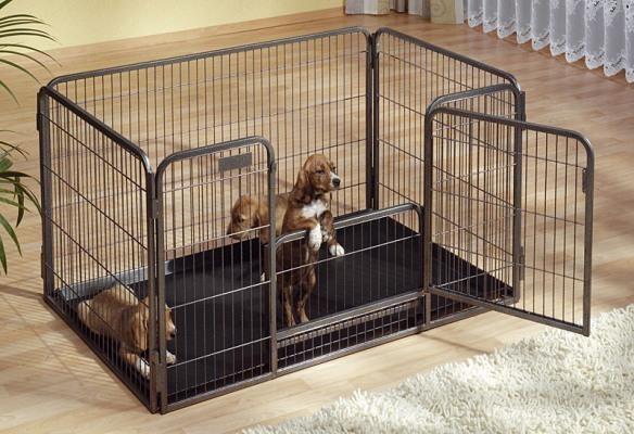 Recinto con vaschetta e doppia porta cane - Recinto mobile per cani ...
